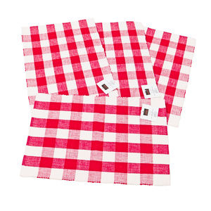NWT  Buffalo Check Red and White Place Mats Set 4